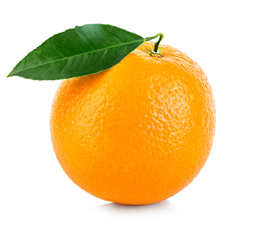 orange_modern_contracts