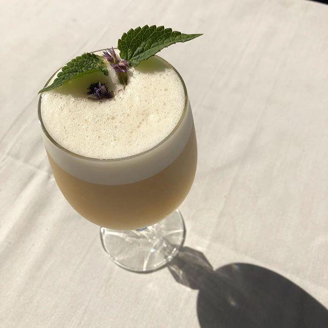 The 5 o'clock Shadow.  Geranium Gin, Lustau East India Solera, Alessio Blanco, Valley Shine Limoncello, anise hyssop, lemon, egg white. #craftcocktails #cocktails #bartender #bartendersbible @valleyshinedistillery @geranium_gin @bodegaslustau #alessiovermouth @blanchardmountainfarm