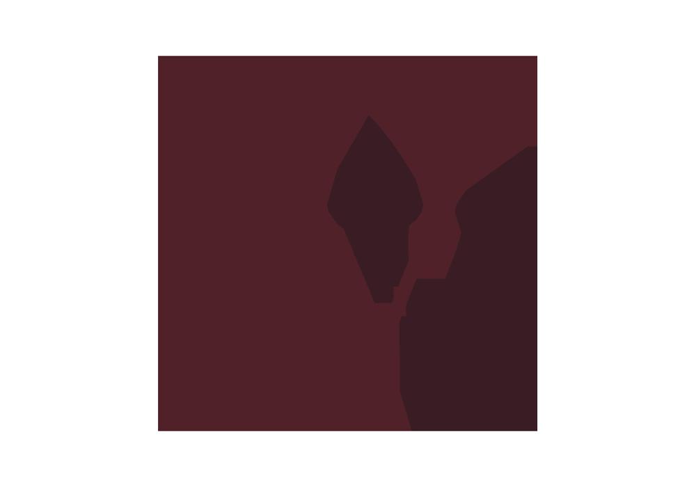 veliterna-logo.png