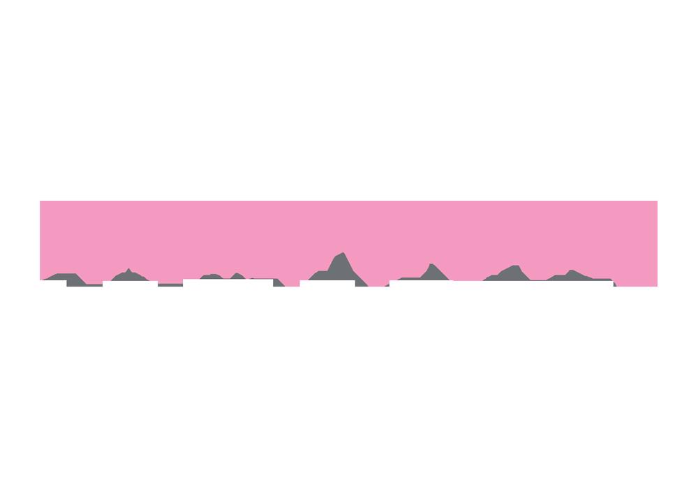 pamplune-logo.png
