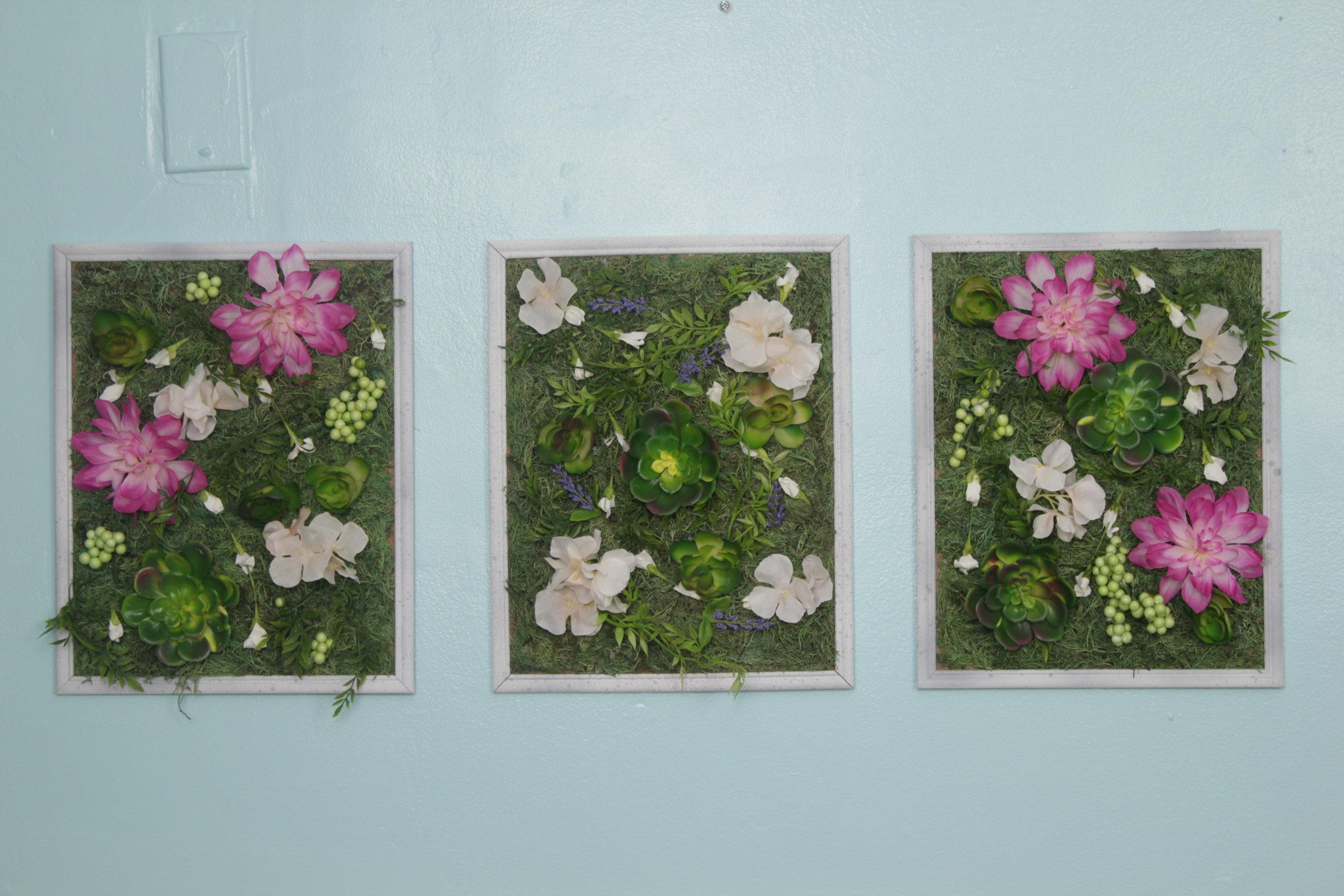 Dollar Tree DIY| Living Plant Wall (COMING SOON)