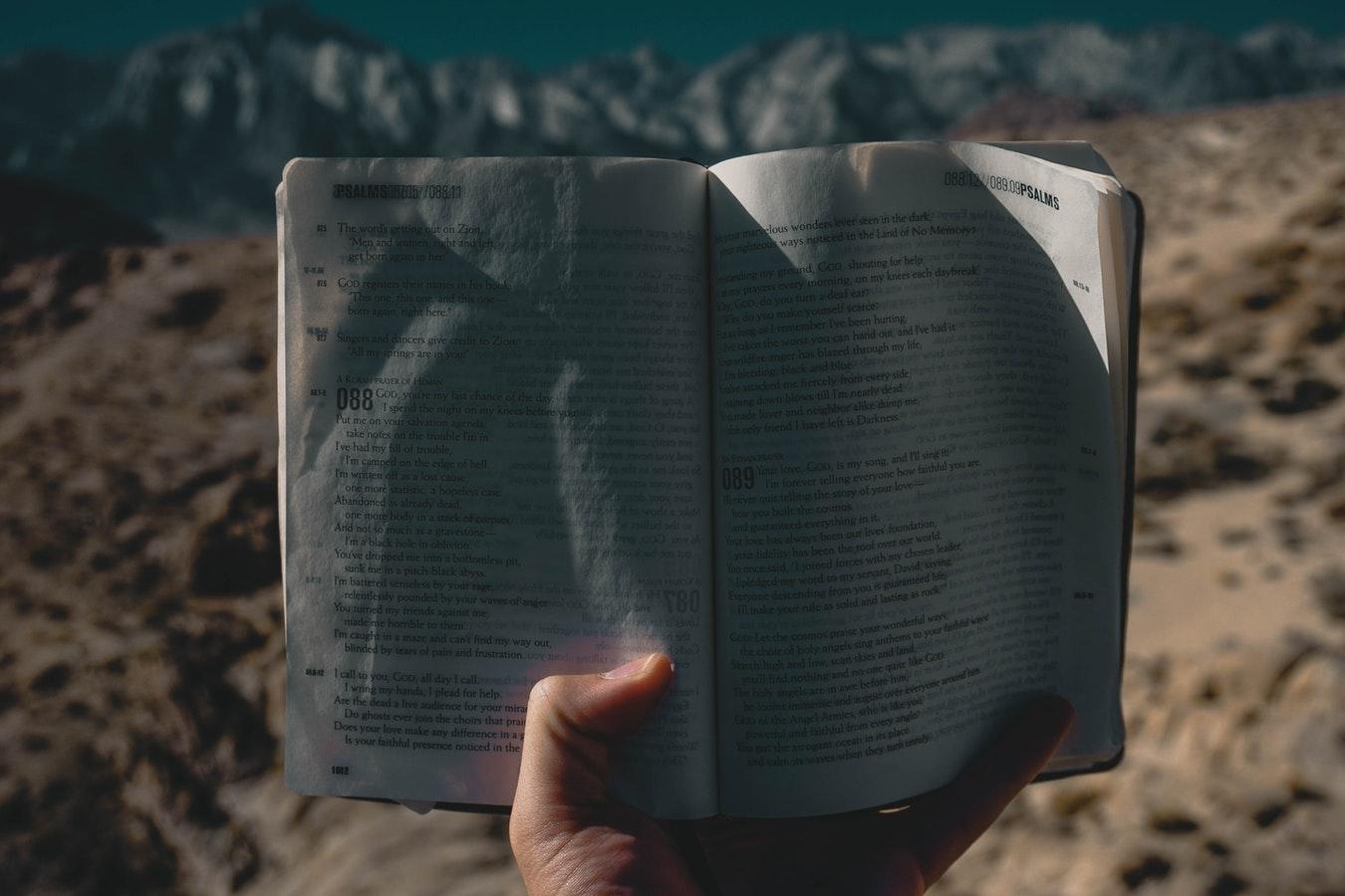 book mountain.jpg
