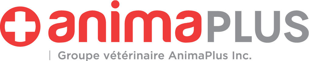 Copy of AnimaPlus Group