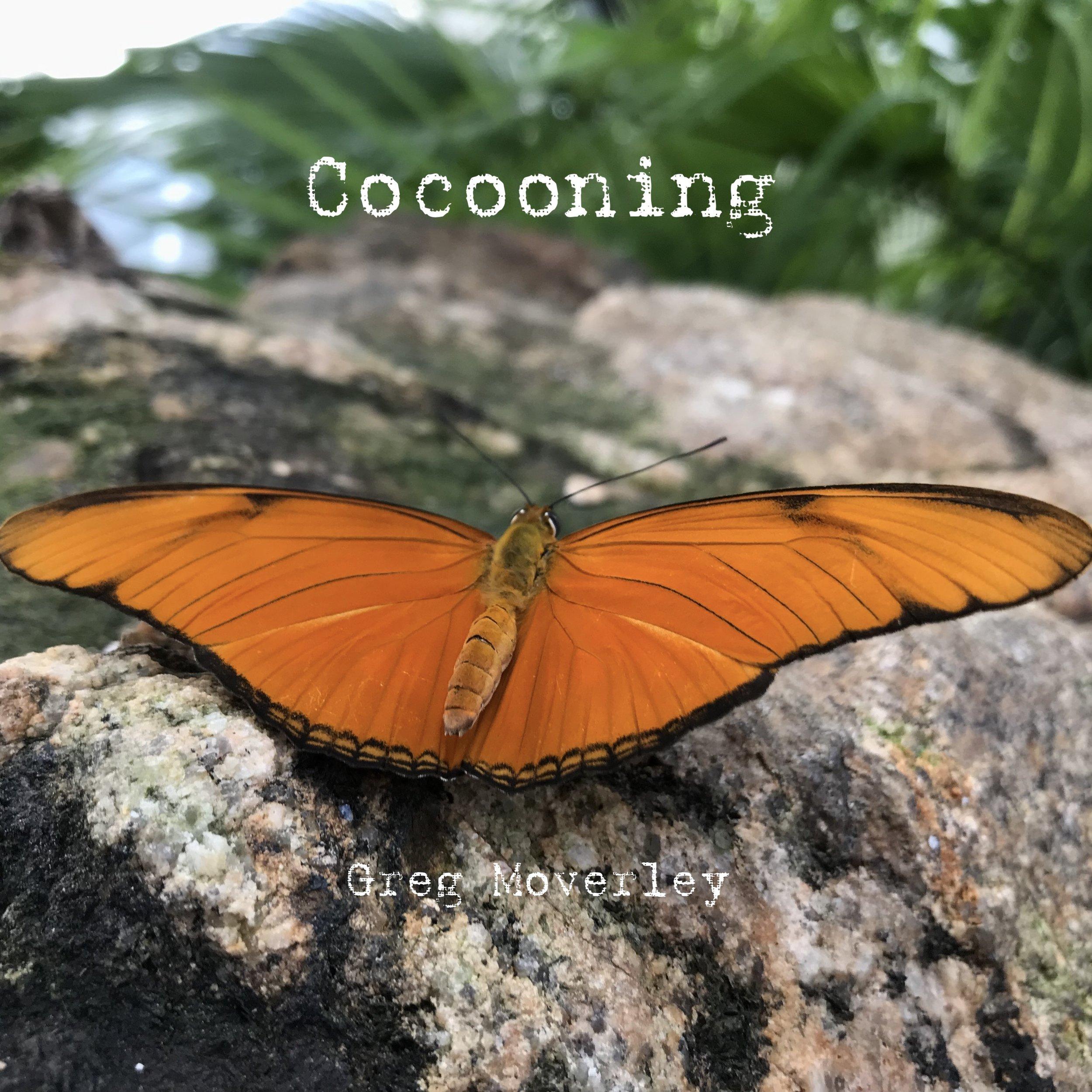 Cocooning.JPG