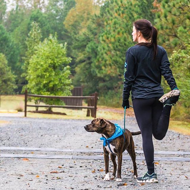 Running buddiez 4 lyfe. 👊🐾 These arctic temps in Charlotte have kept my running shoes in the closet and my @jillianmichaels #30dayshred videos on repeat. 😂 But the running #fomo is kickin' in real hard right about now, so Pharaoh and I just might have to face the snow they're calling for this wknd and lace up for a long run. ❄️ Who else has been braving the cold for some miles??