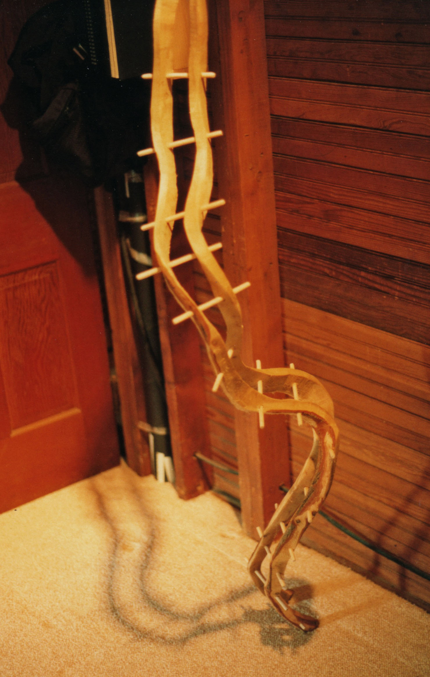 jacobs_ladder_1_detail.jpg