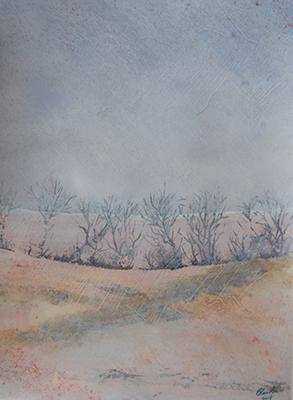 #106 Landscape