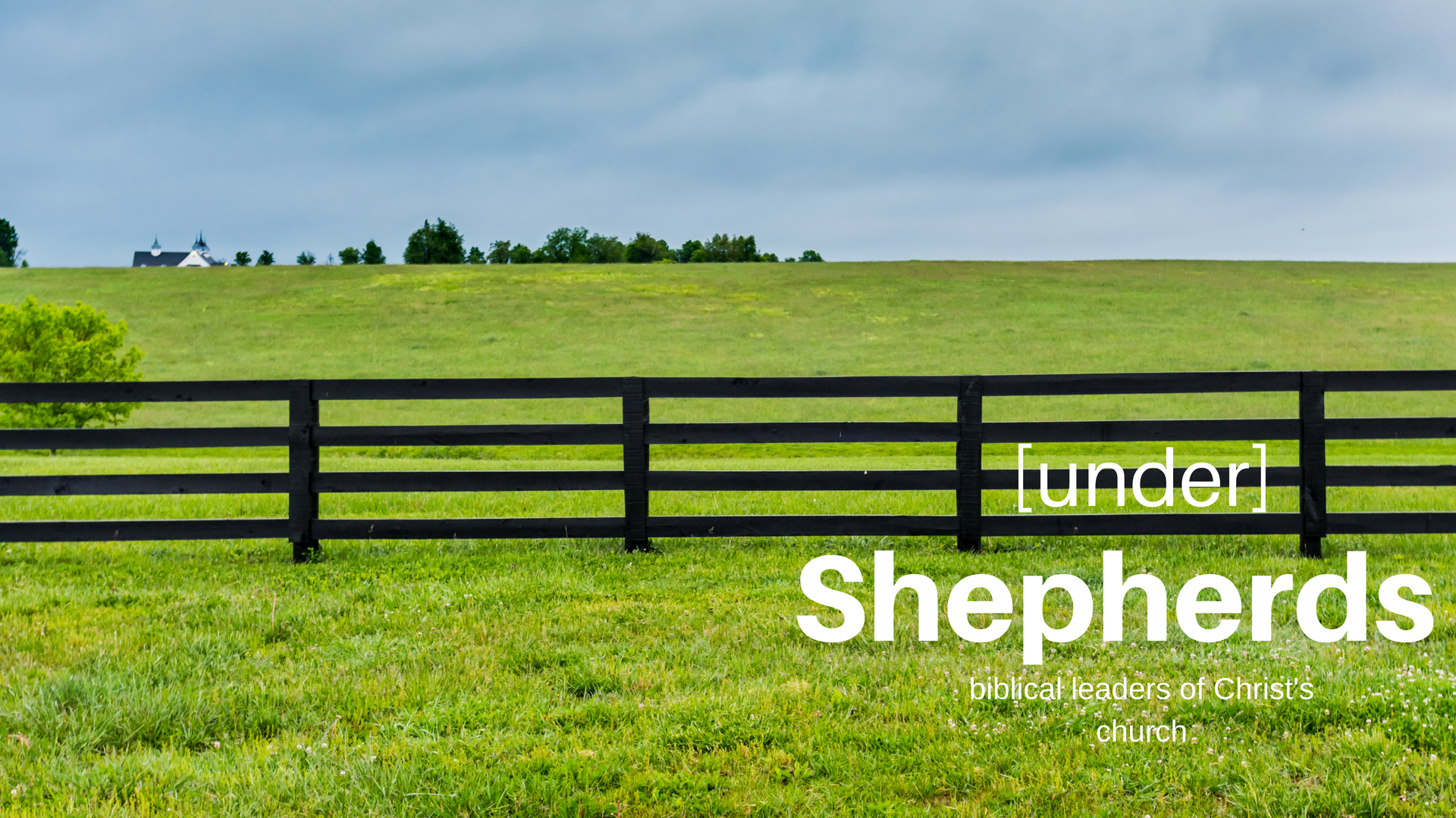 [under] Shepherds.jpg