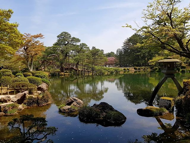 Yesterday spent in the Kenrokuen Garden in Kanazawa ❤