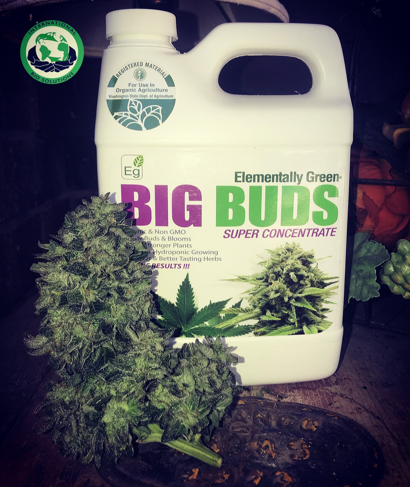 Big Buds Formula — International Bio-Solutions