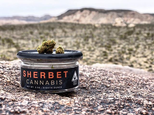 Sherbet on the rocks anyone? . . . . Dope shot by @jahquito_way  #sherbet #cookies #lightdep #joshuatree #socal #california #cannabiscommunity #smoke #thc #cbd #rockclimbing #bouldering #stayfit #beactive #stayhigh