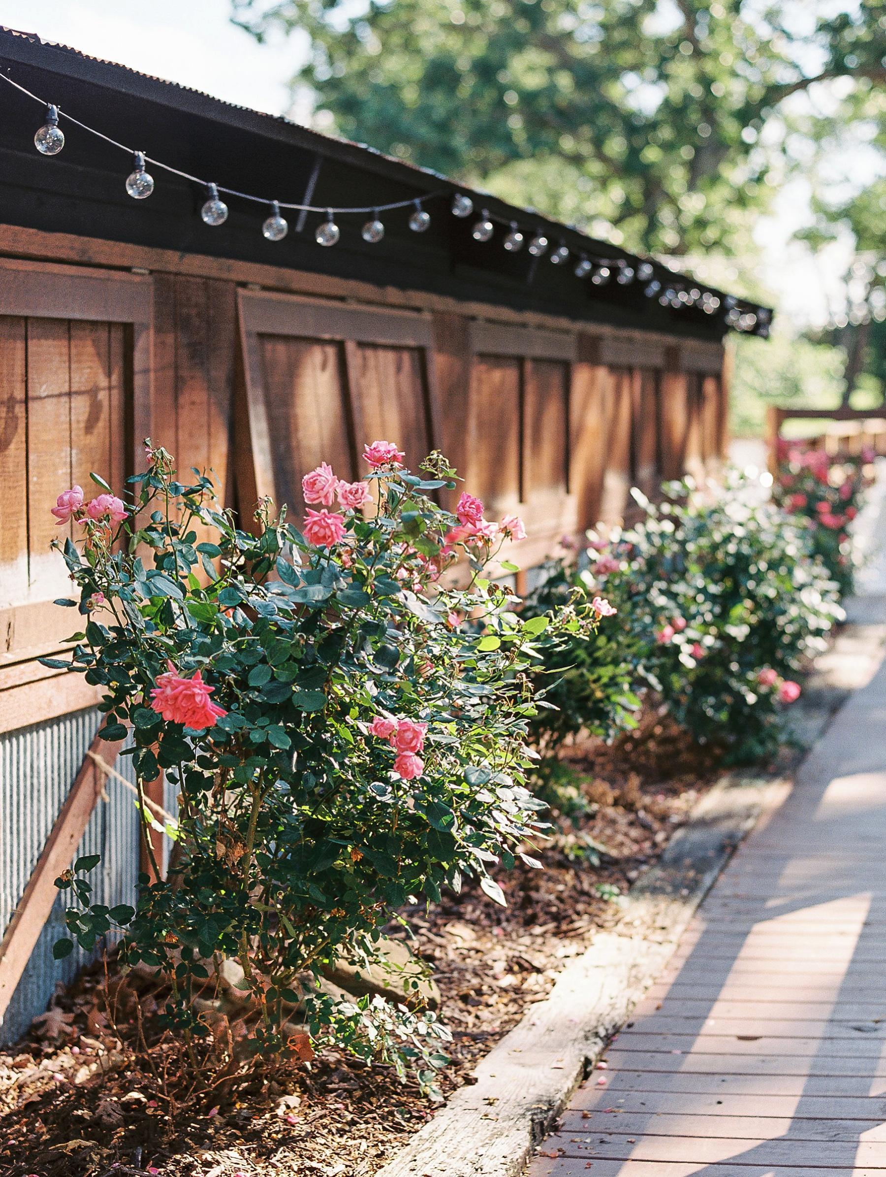 Barn at The Springs Arkansas Wedding Zimmerman Floral_0057.jpg