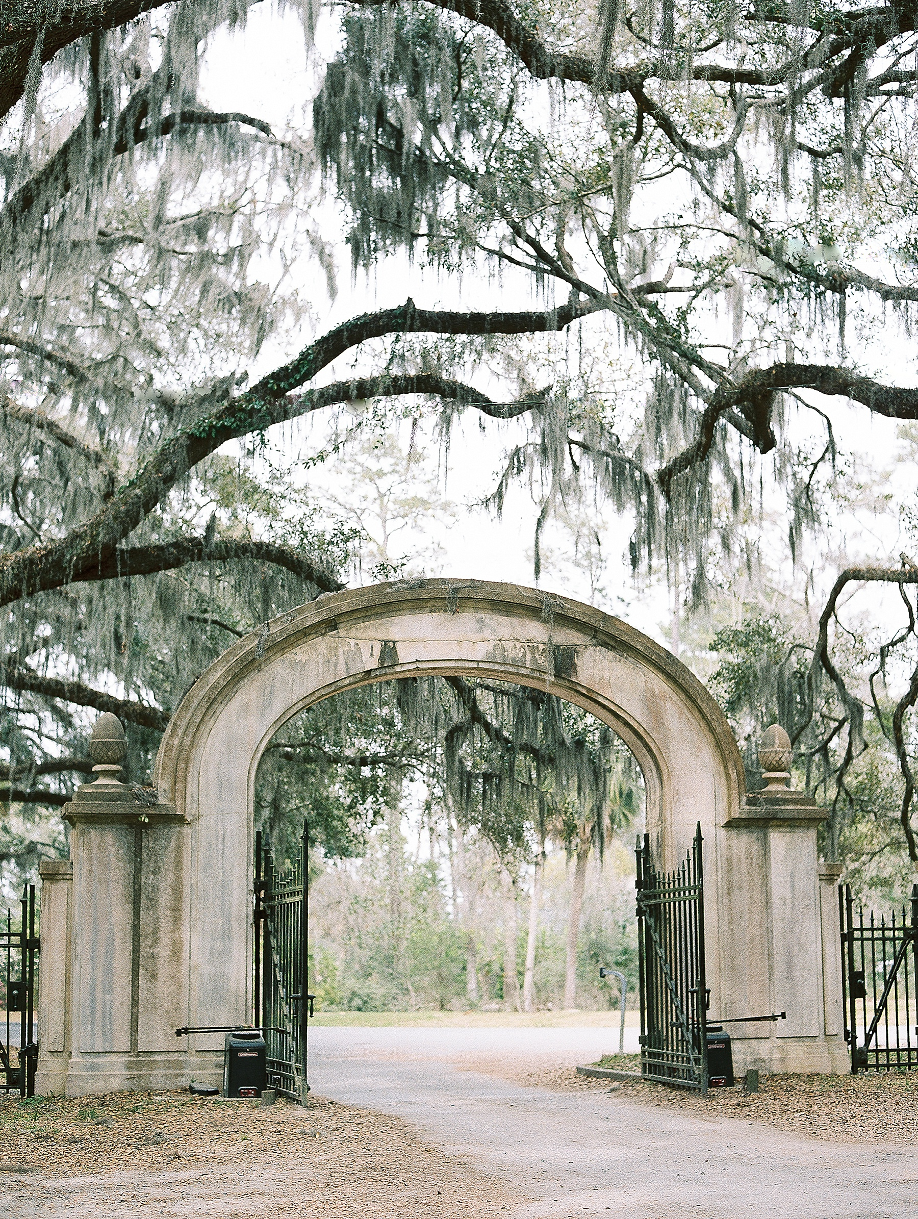 Savannah Georgia Wedding Photographer_0065.jpg