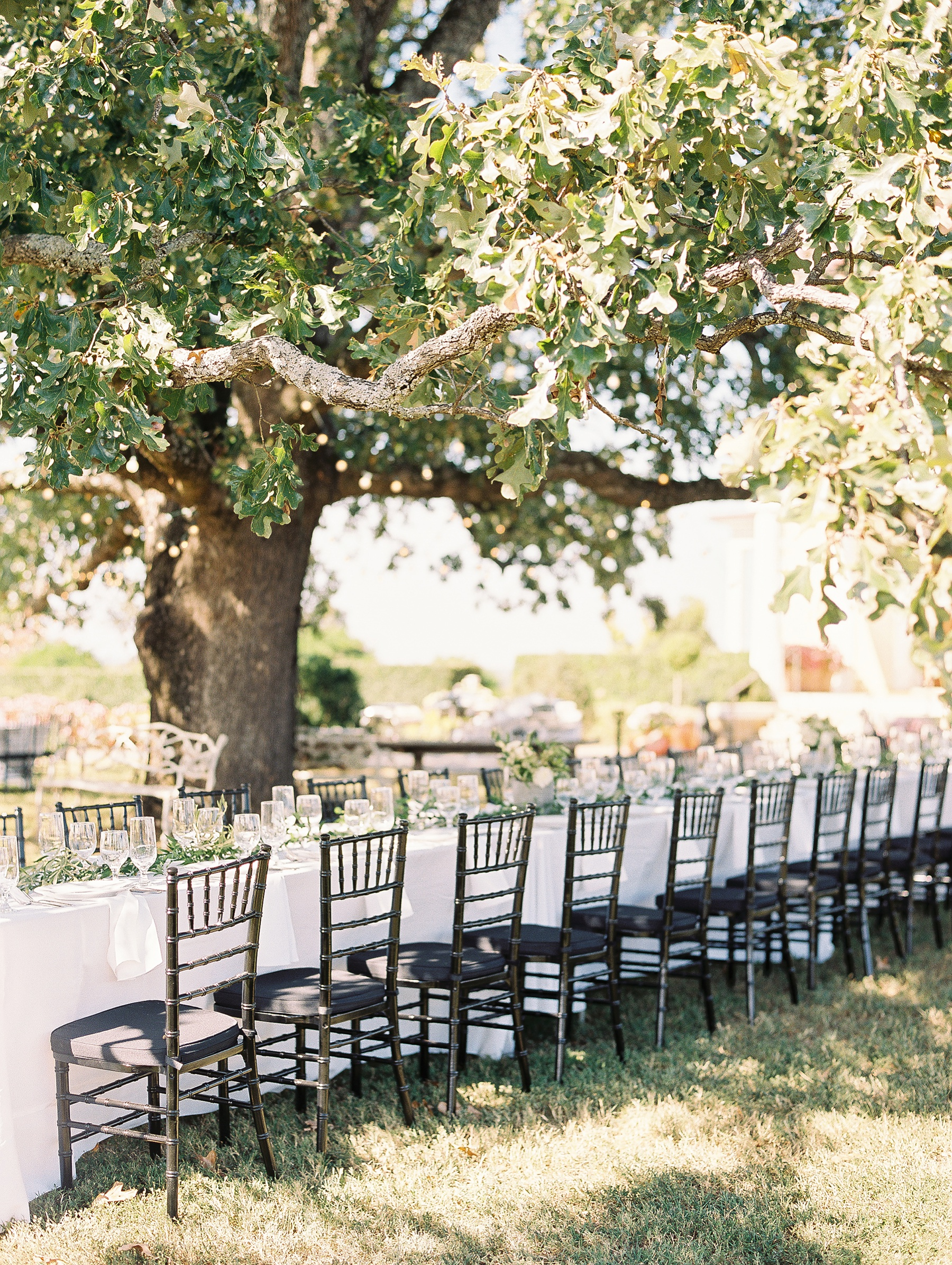 Moss Mountain Farm Wedding Arkansas_1175.jpg