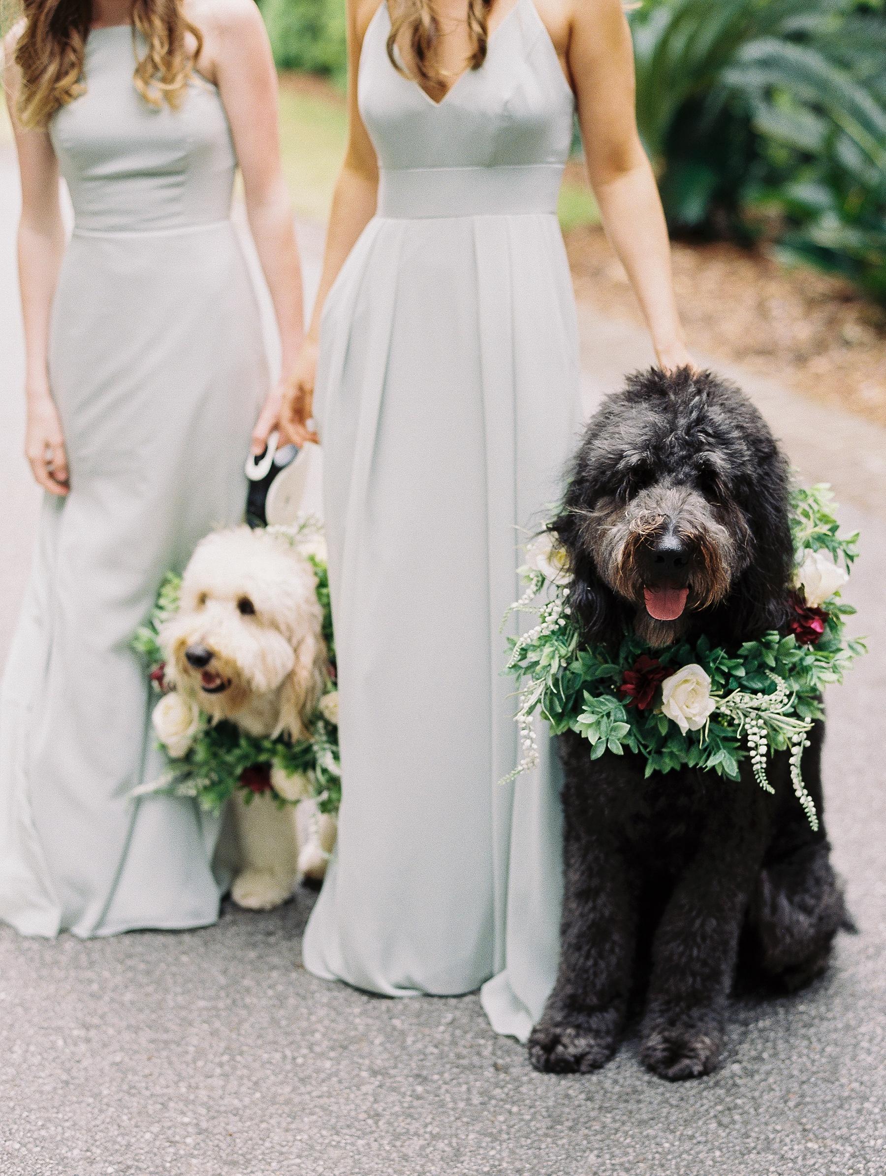 Charleston South Carolina Wedding Photographer_0317.jpg