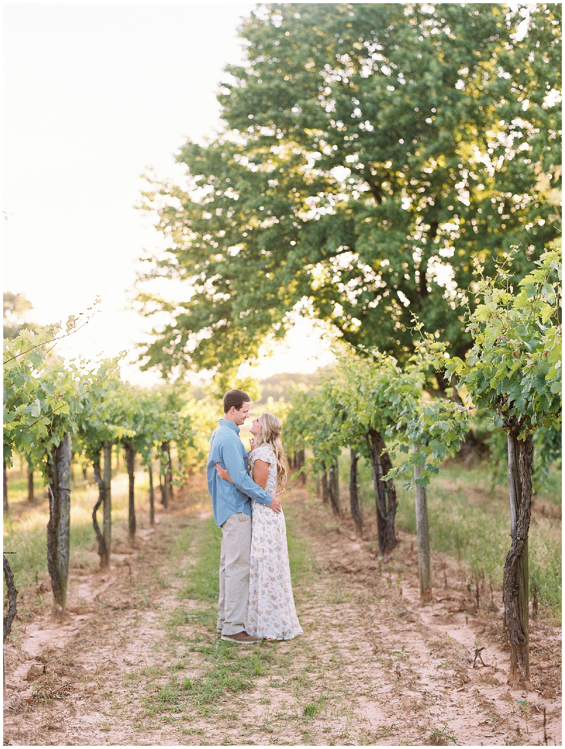 Vineyard Wedding engagement session_0064.jpg