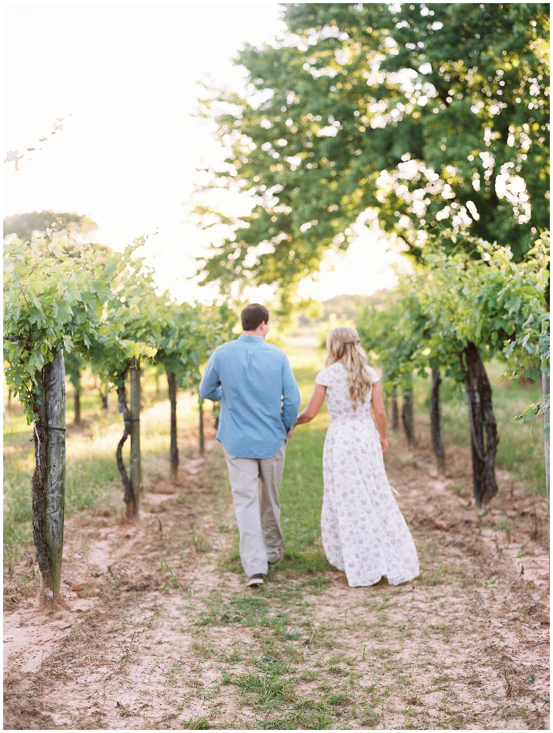 Vineyard Wedding engagement session_0071.jpg