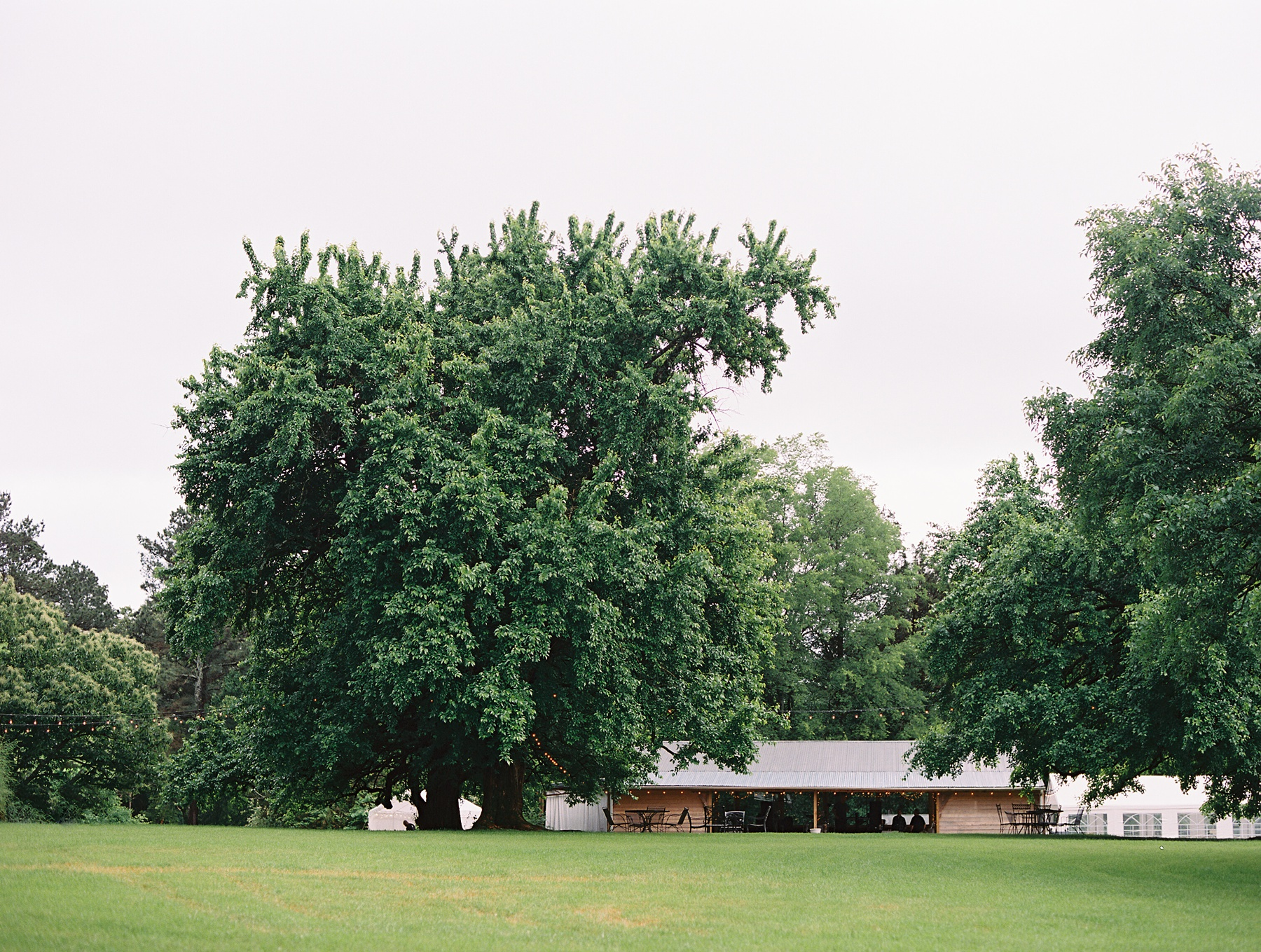 Hedge Farm Weddings Tennessee Wedding Photographer_0556.jpg