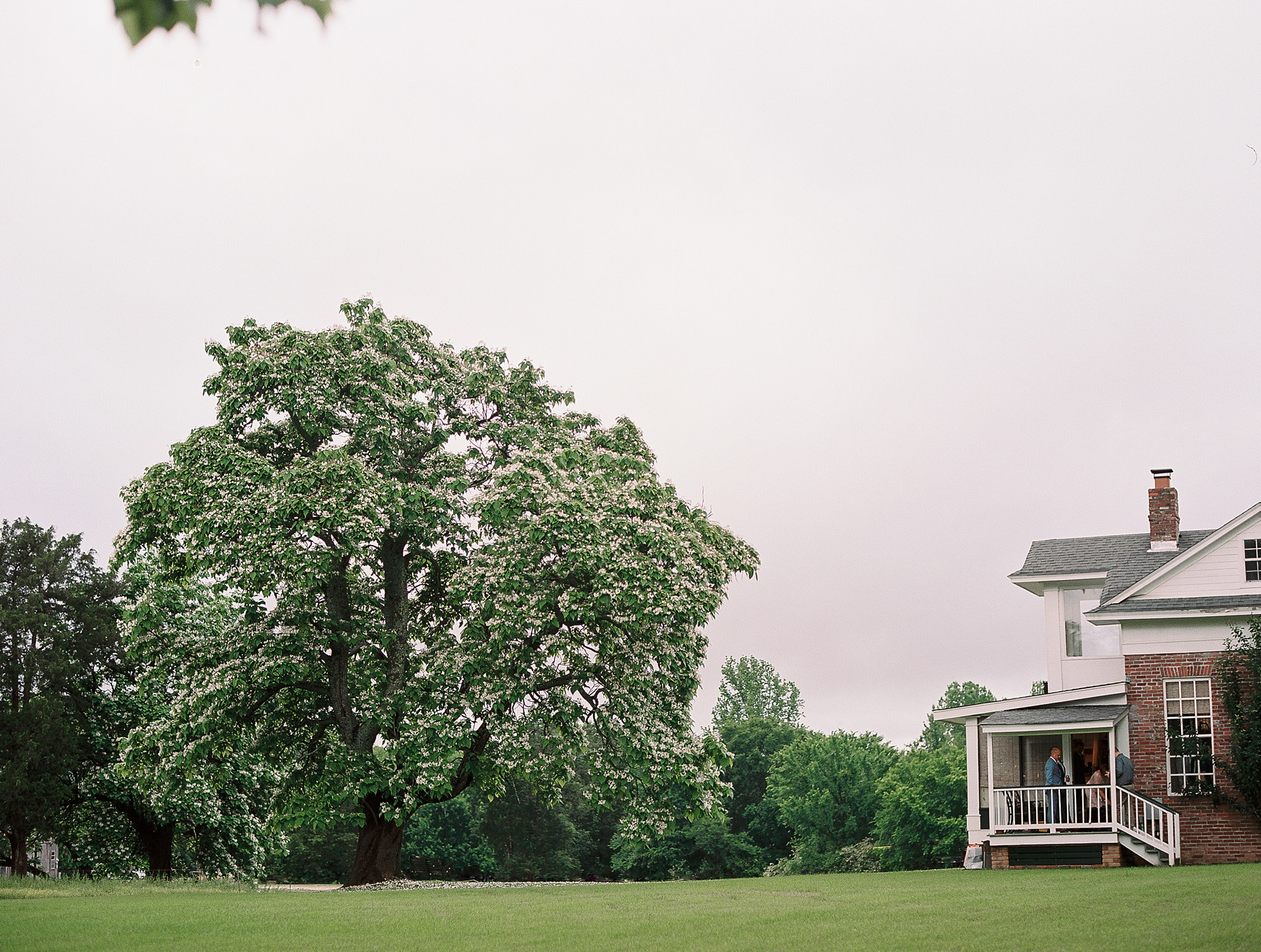 Hedge Farm Weddings Tennessee Wedding Photographer_0622.jpg