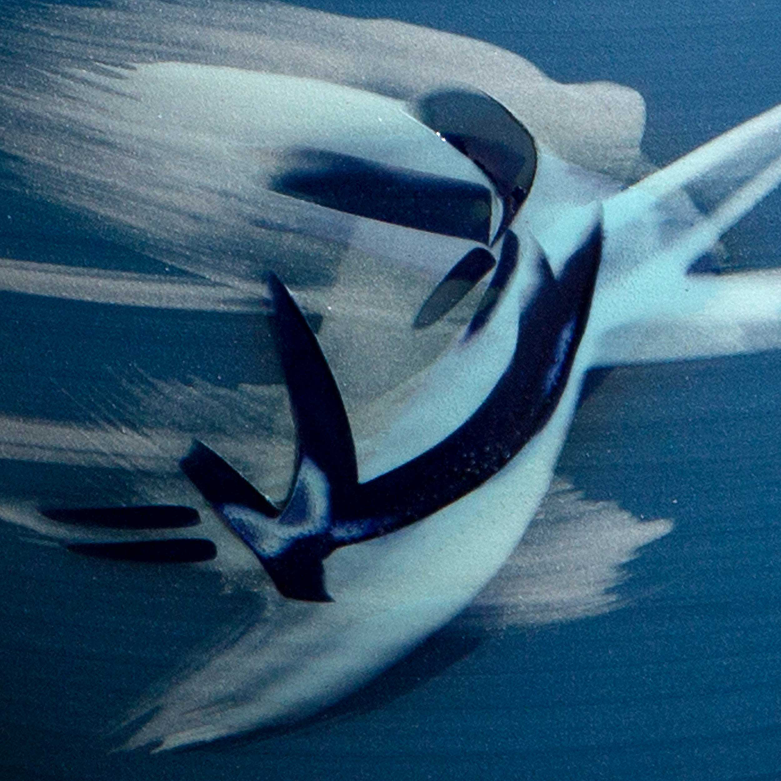 Ocean Spray Ceramic Pattern by Rowena Gilbert
