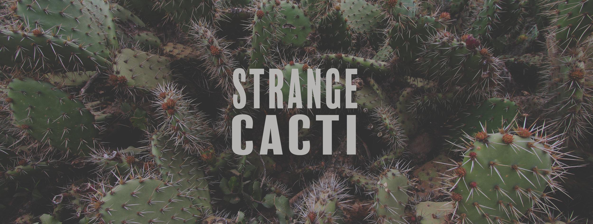 STRANGE CACTI short.jpg