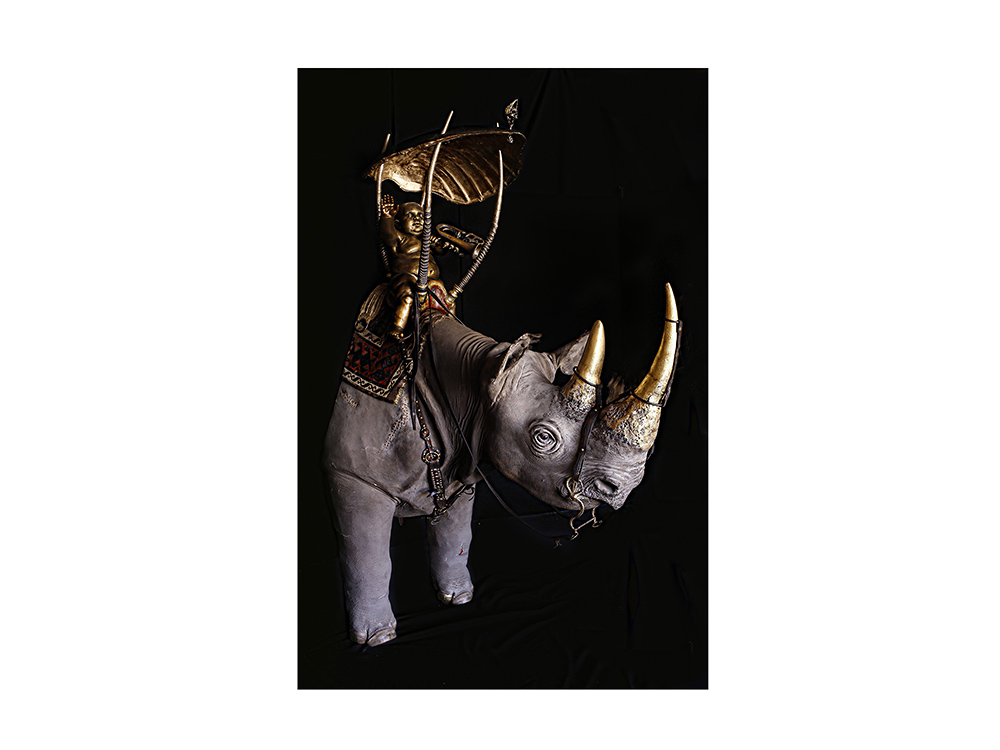 Low and B. Hold Mammon: Habes pecuniam (her/ostrich)/Et in Arcadia Ego (him/rhino)