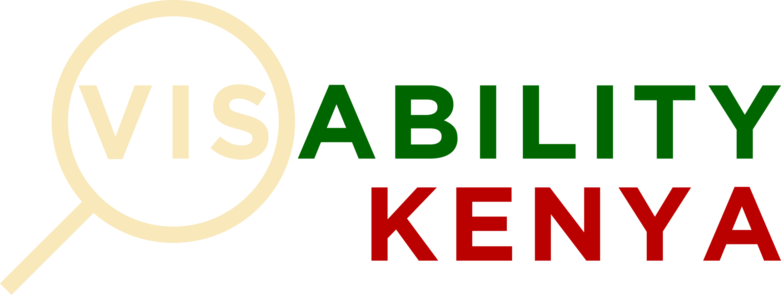 VisAbility Kenya Logo Colour3_ .png