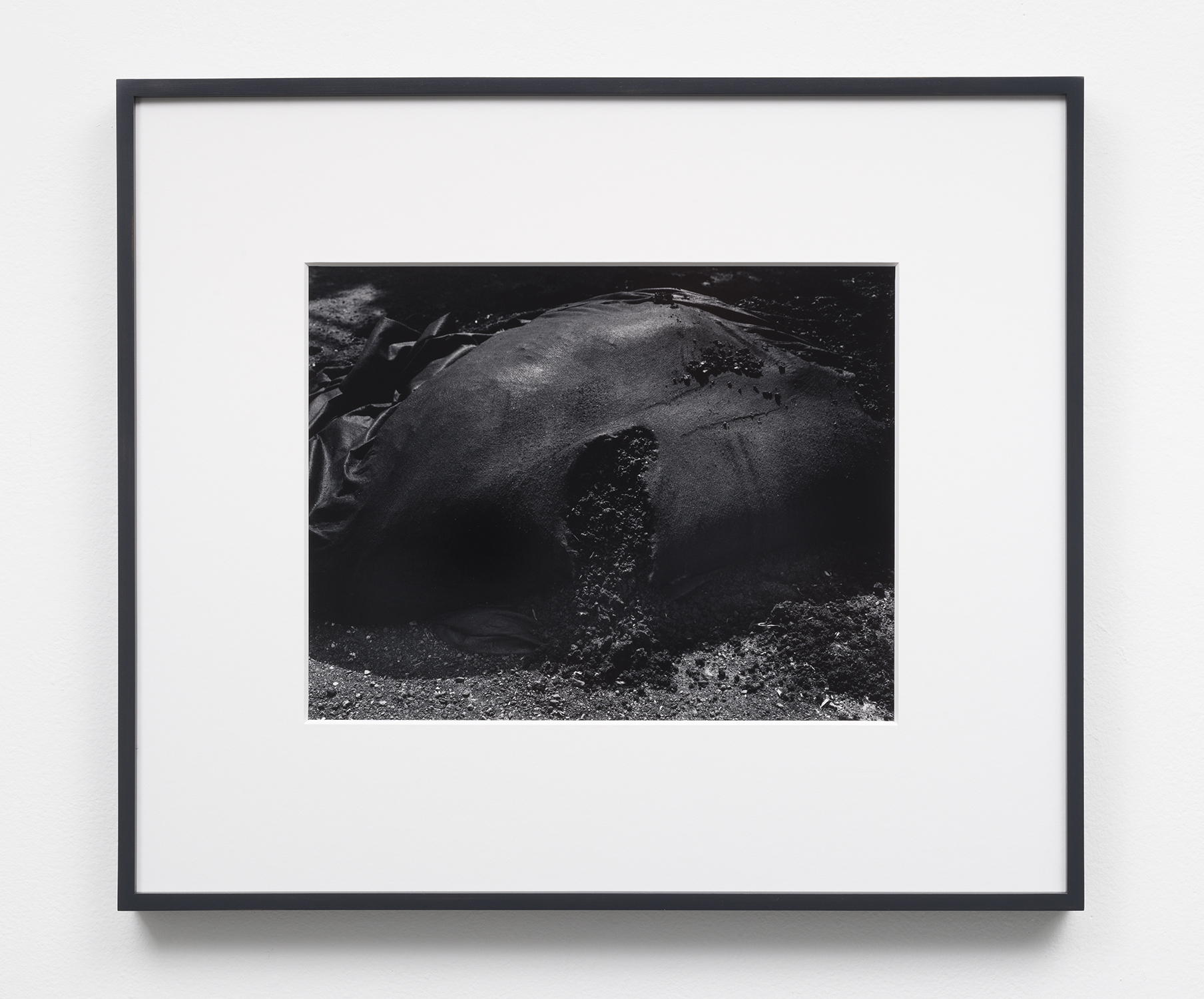 Flesh,  10.25 x 13.25,selenium toned, silver gelatin print in 8 ply over-mat (18 x 21),painted wood frame, 2018