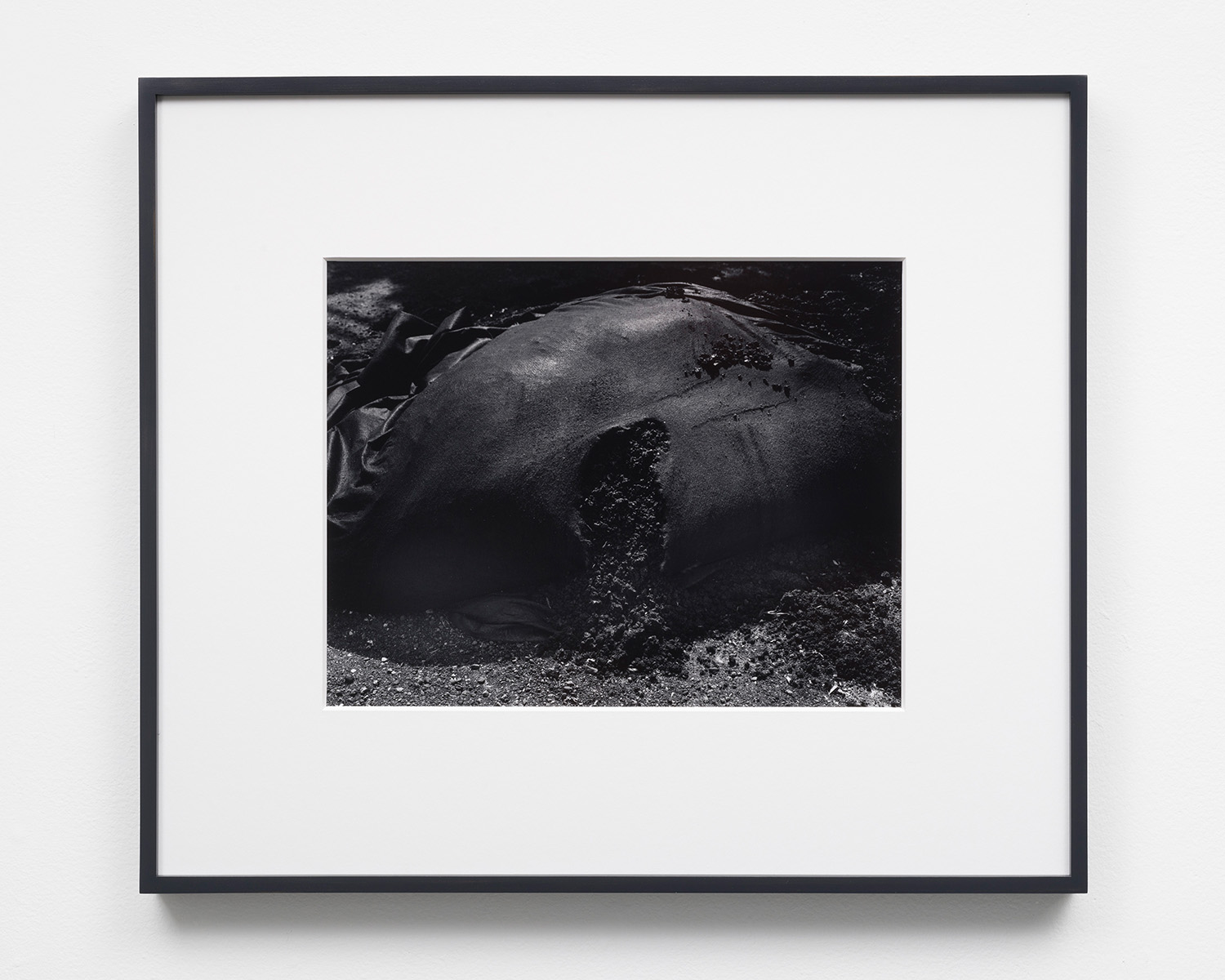 Flesh,  10.25 x 13.25, Gelatin silver print in 8 ply over-mat (18 x 21), 2018