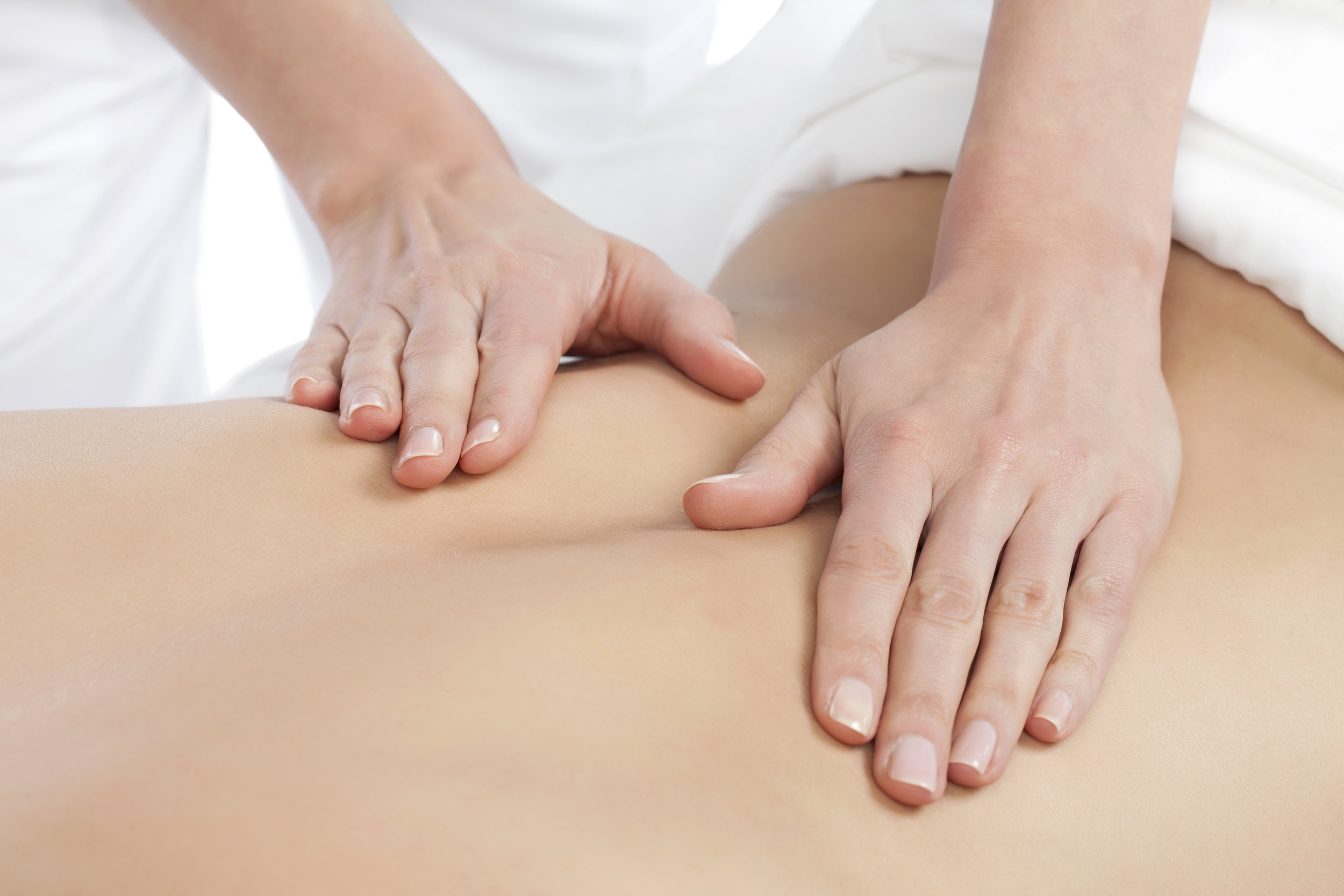 Massage Therapy - We offer various massage therapy techniques to fit your needs. Massage therapy works on relaxing tight muscles and puts your body into a state of relaxation. It is great for activating the lymphatic system of the body to promote purification and fluid release. Circulation is increased as well as an overall feeling of well being. When acupuncture and massage are combined, the effectiveness of both treatments becomes more powerful.