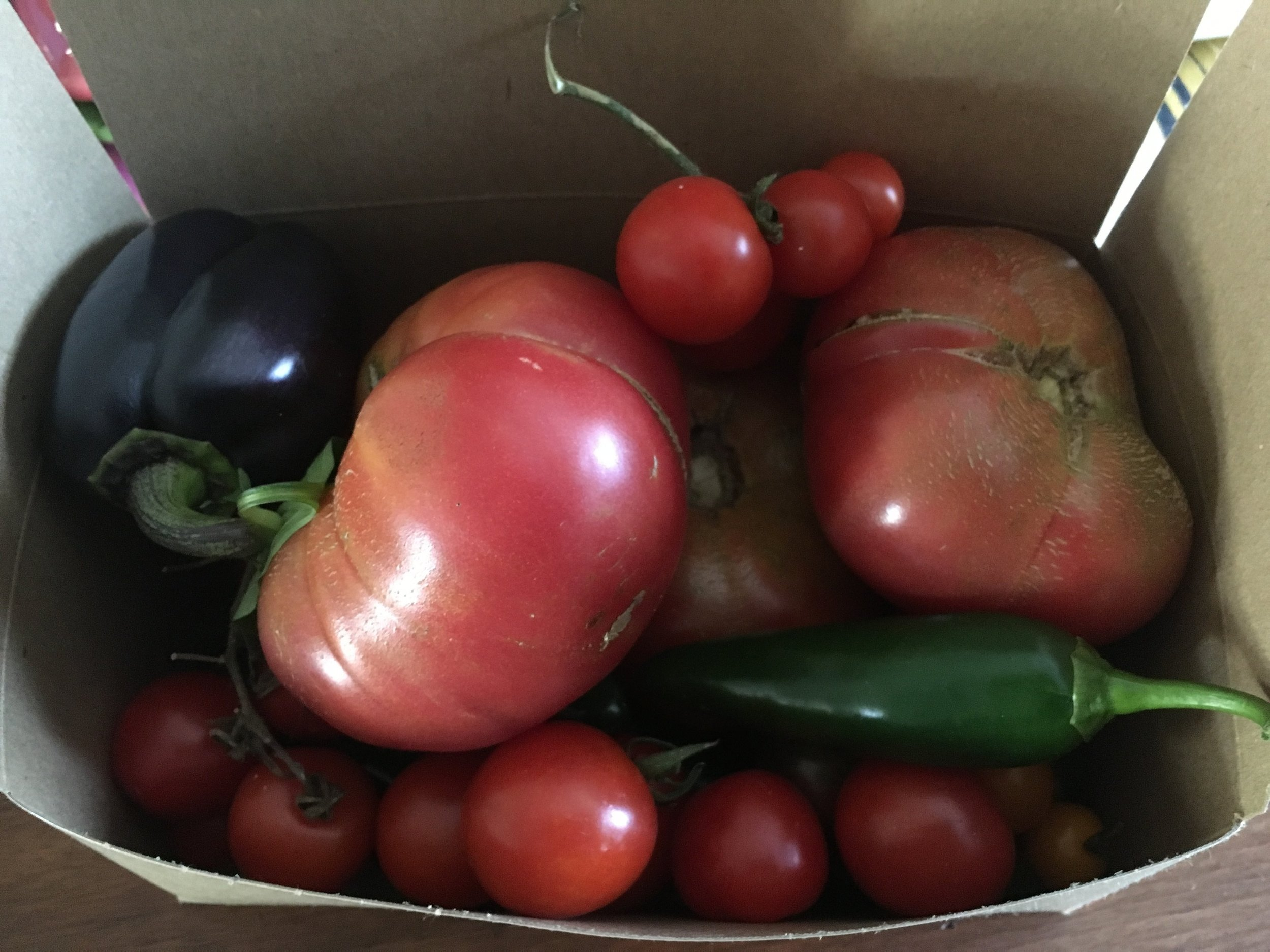 Interviewing gardeners has its perks: I went home with a package full of beautiful and fresh heirloom tomatoes, peppers and squash.