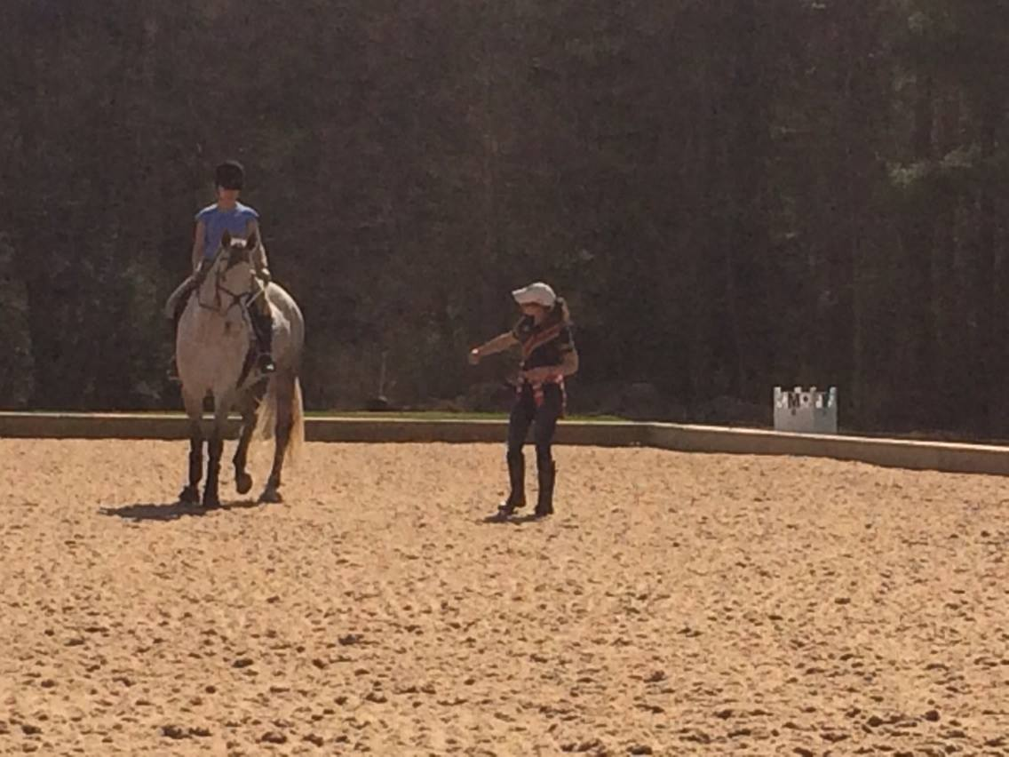 A.J. Foltz and Irish Diamond in a lesson at River Edge Farm with Therese.  Photo credit Kristi Foltz