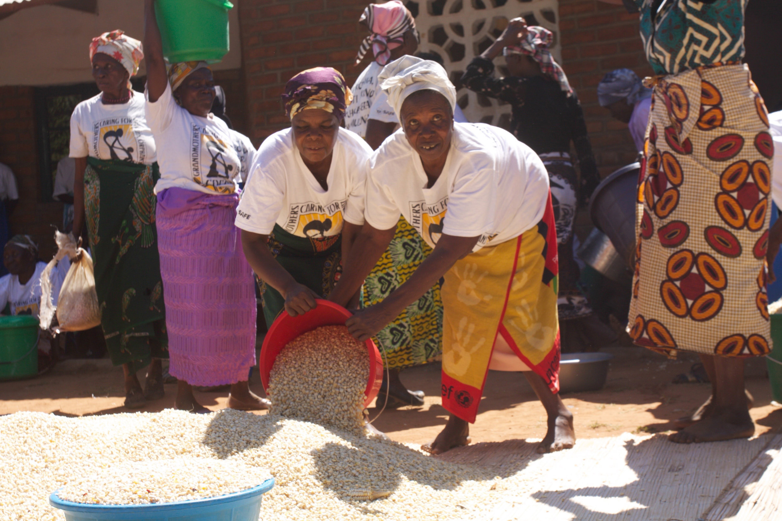 Malawi's poor and aging village grandmothers and grandfathers daily face the challenge of raising the more than one million children orphaned by disease and the HIV/AIDS pandemic. Our assistance programs bring vital seeds and fertilizer, preschools and tuition help, nutrition and hygine training and a the support of a spiritual community.