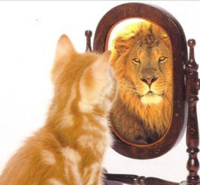 The most powerful force is how you see yourself.