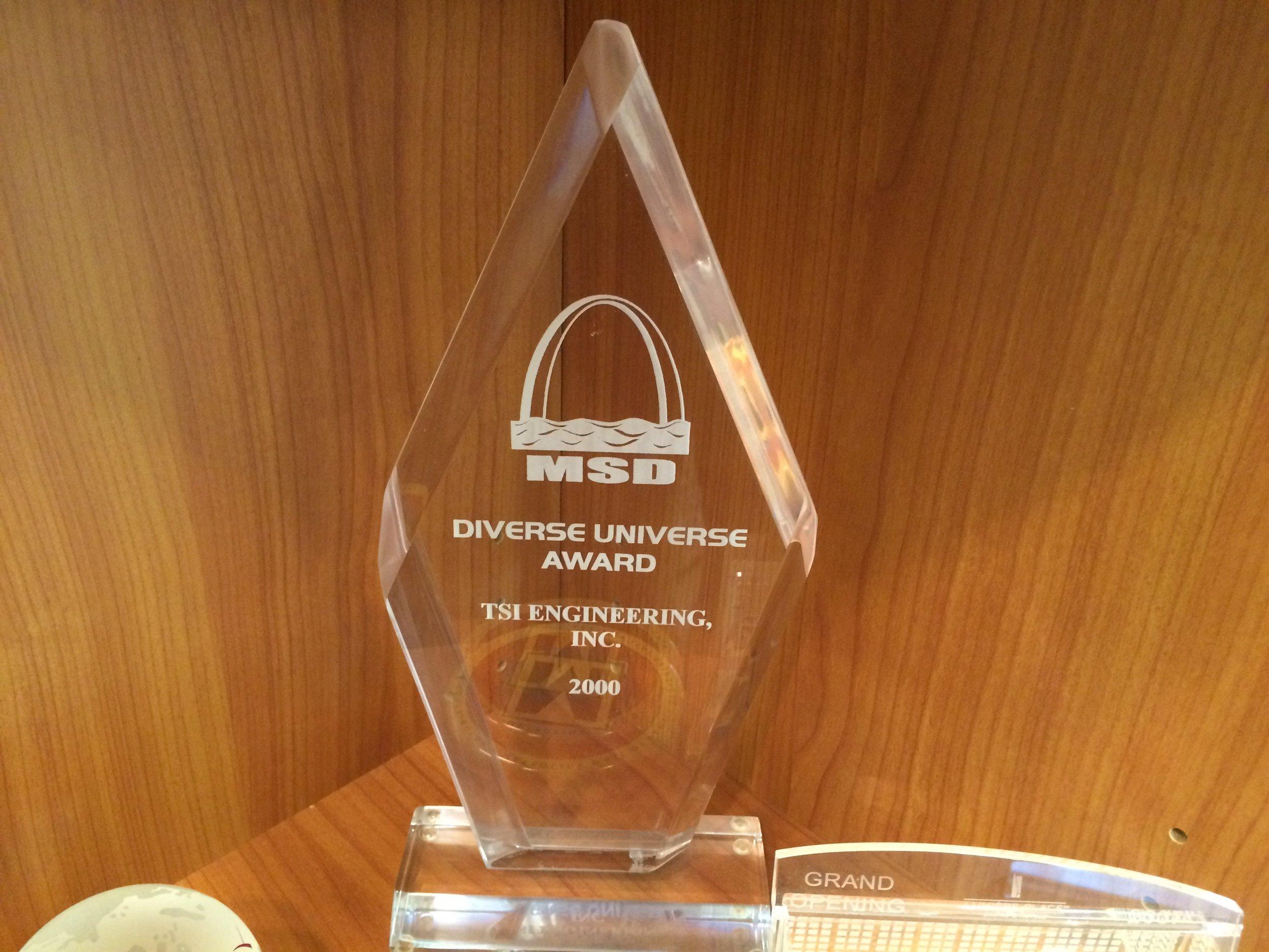 Diverse Universe Award