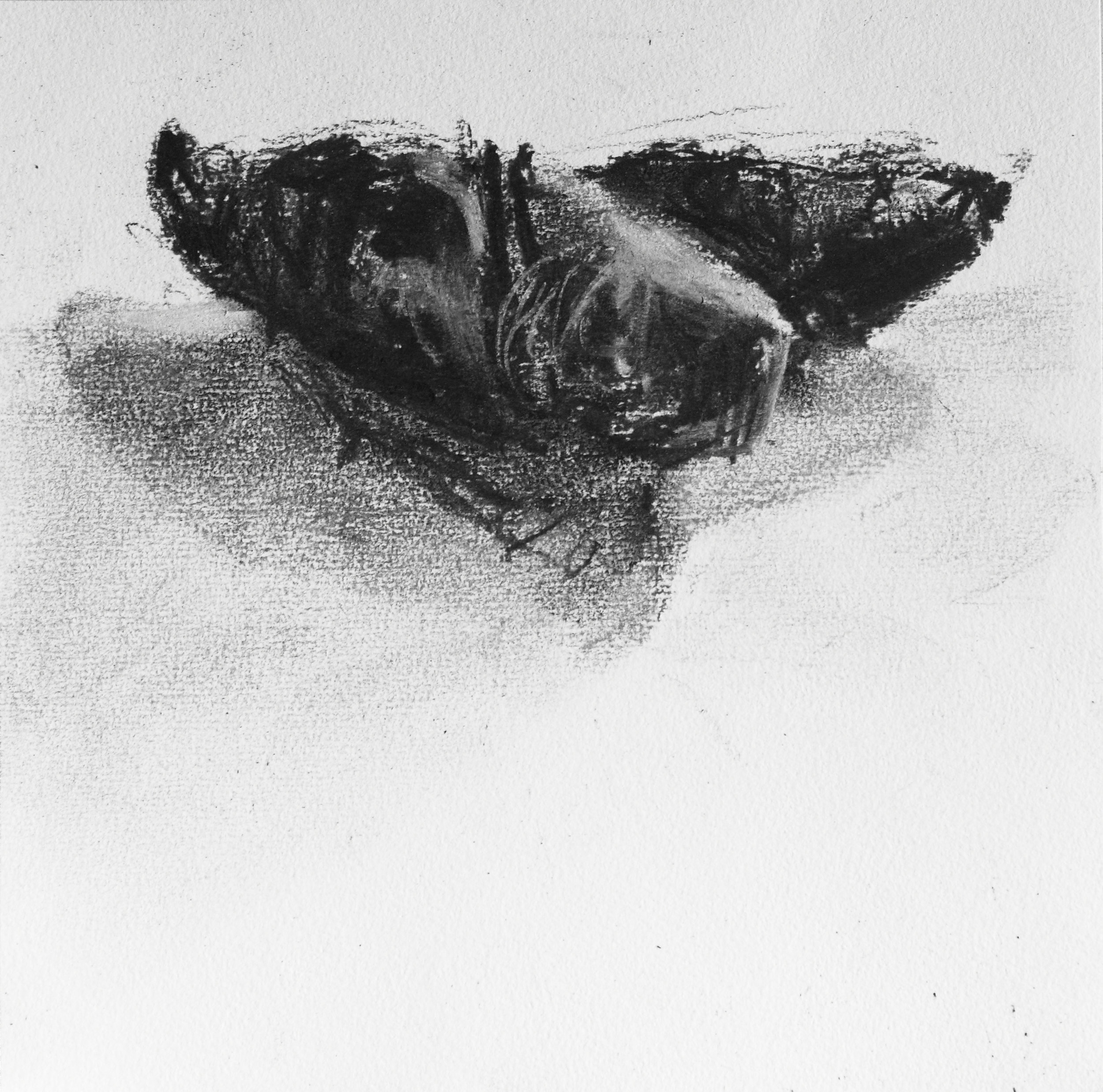 N Mason BTRW scats charcoal on paper 20x20cm IMG_5953.jpg