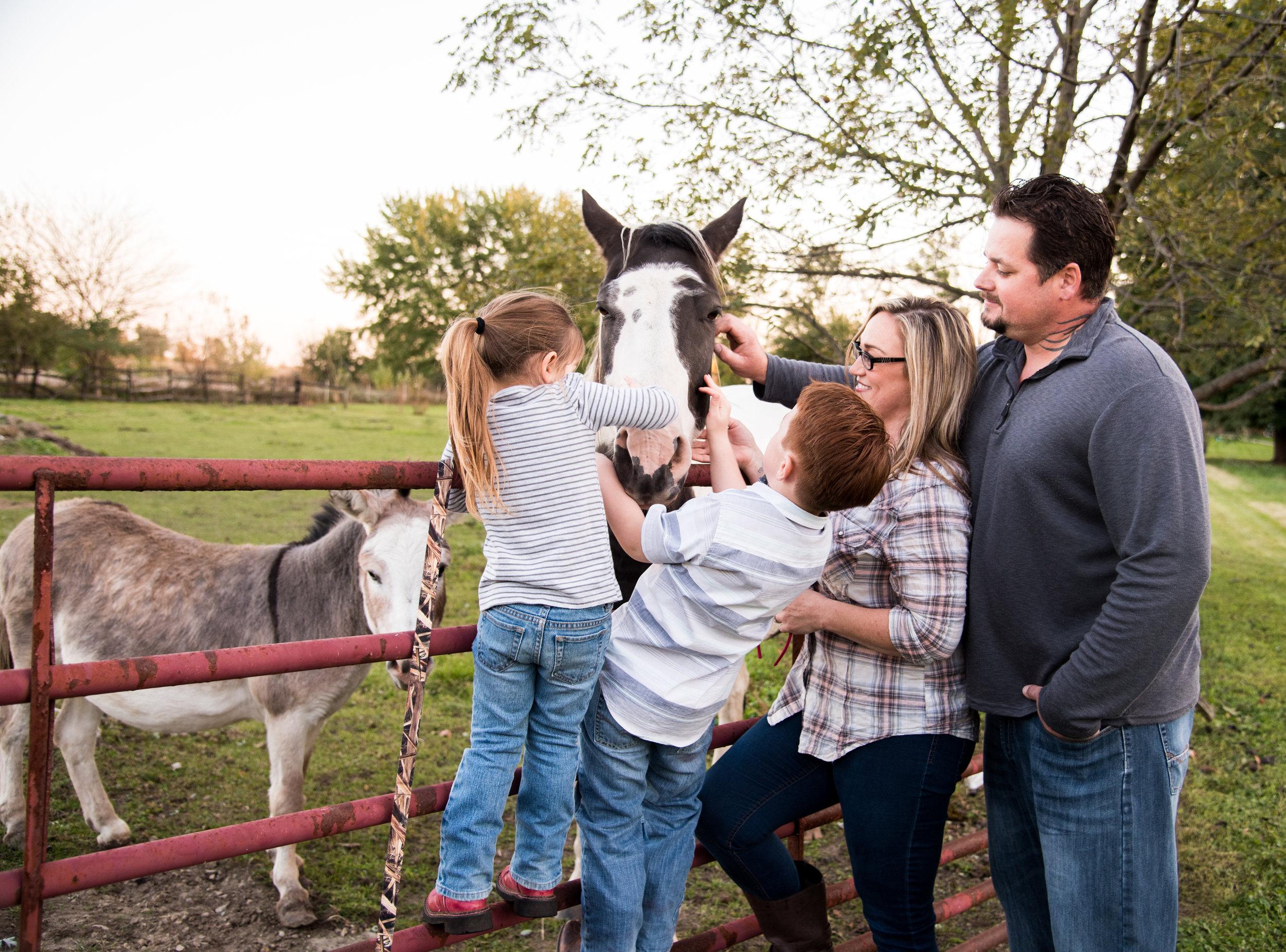 Muncie Indiana Kyla Jo Photography Family Photographer Midwest Indiana animal photographer