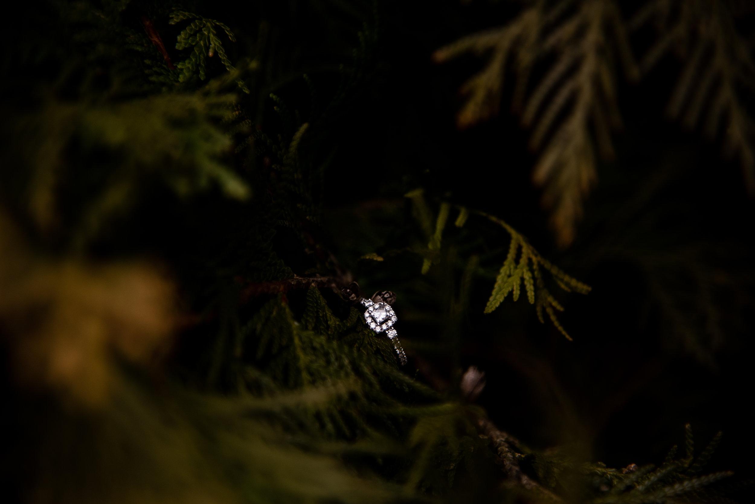 Kyla Jo Photography // Muncie, Indiana // Engagement Photos // Engagement Session // Muncie Indiana Photographer // Midwest Photographer // Whitetail Tree Farm // Couple Photos // Ring Photos