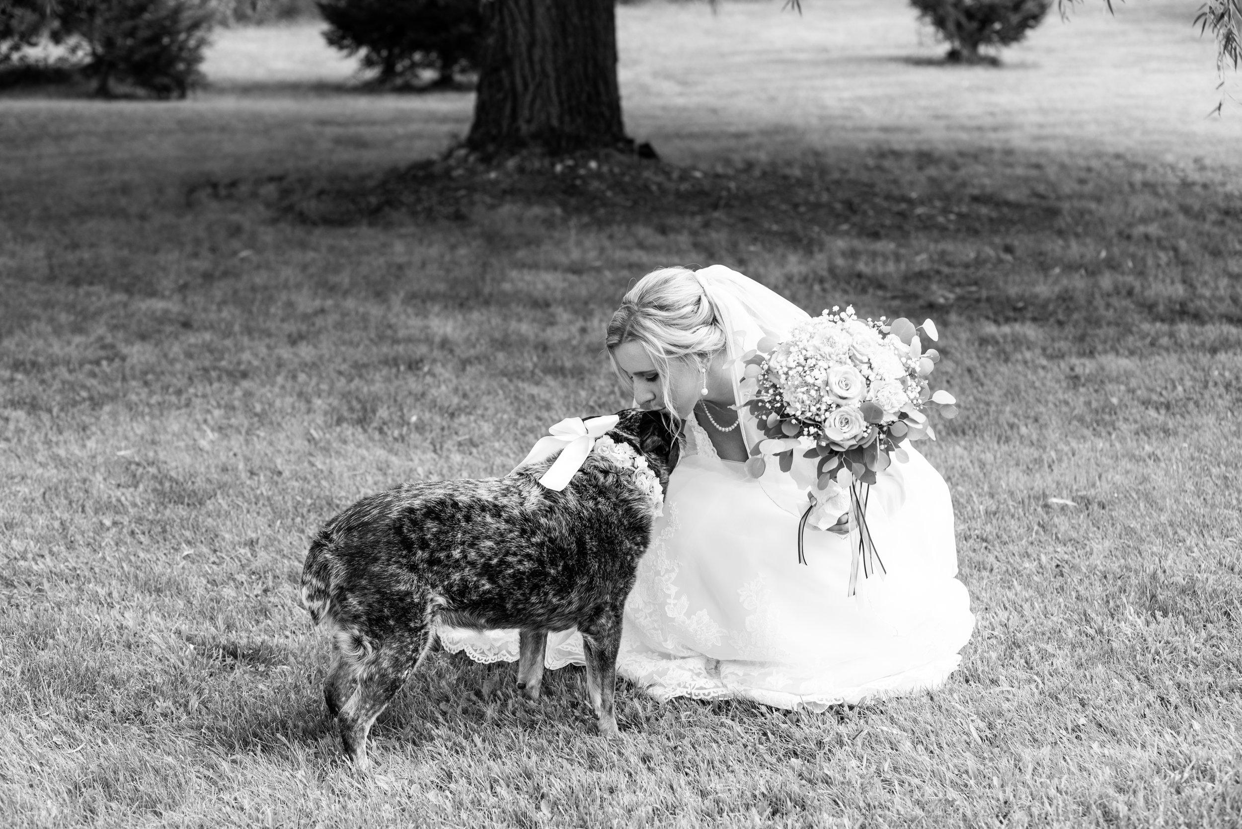 wedding (1 of 1)-22.jpg