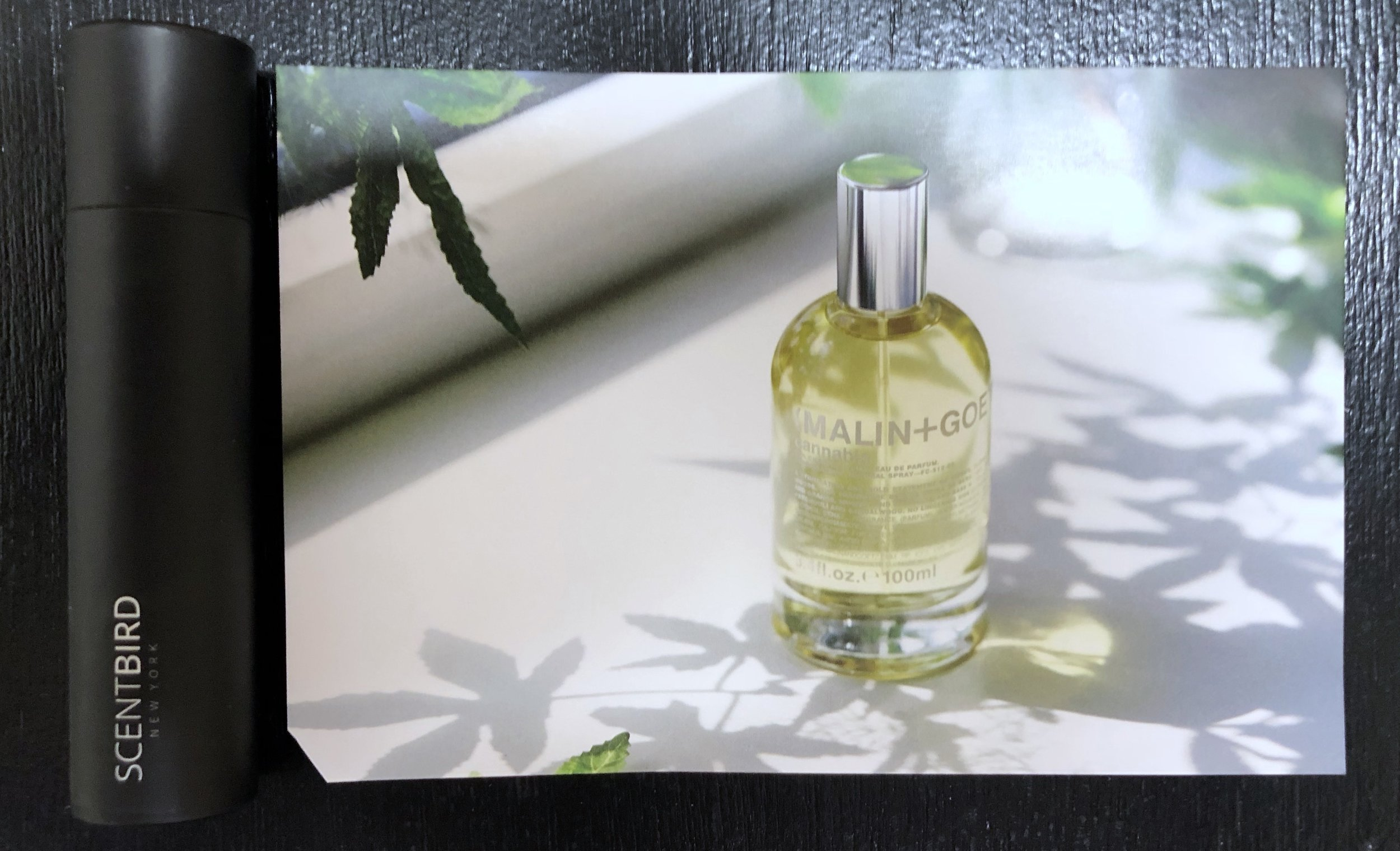 Each cologne comes with a little card explaining more about it