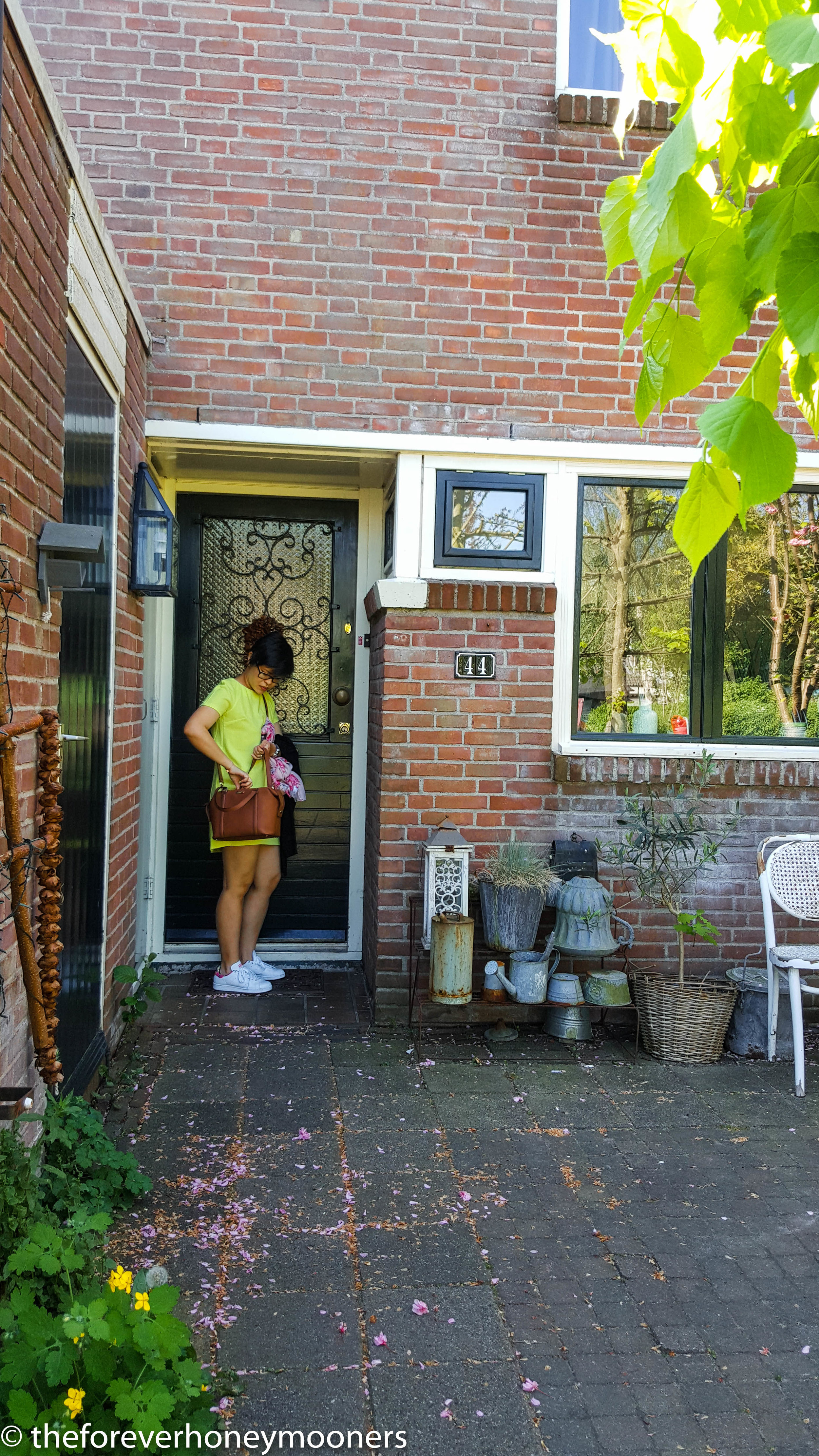 House in Zaandam