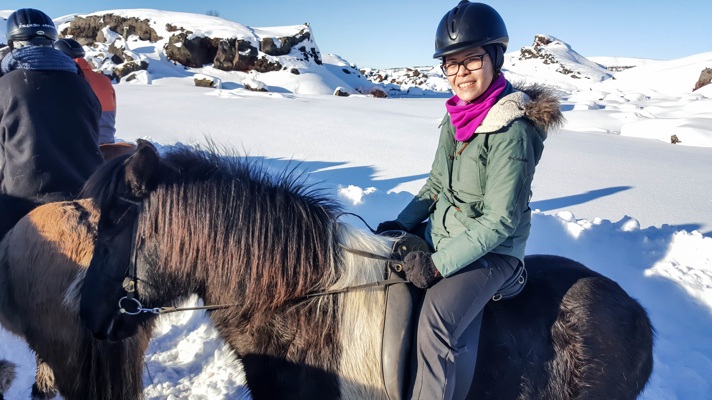 Trying to tölt on an Icelandic horse