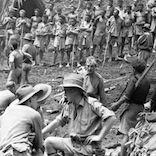 BATTLE FOR EORA CREEK- 22 October 1942.png