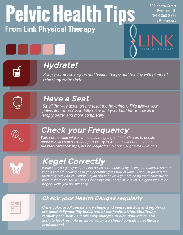 Wellness — Link Physical Therapy