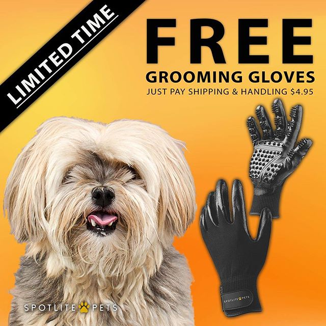 GET or SHARE this limited time offer! 🐶 Secret Link in bio · · #groomingglove #spotlitepets #furrydog #shedding #groomers #bathtime #woof #free #instagramdogs #sharethis