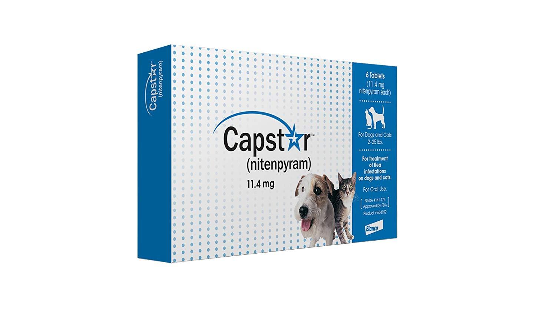 Capstar (nitenpyram)