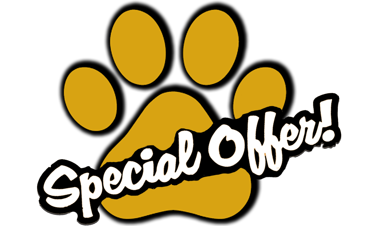 special offer PAW.png