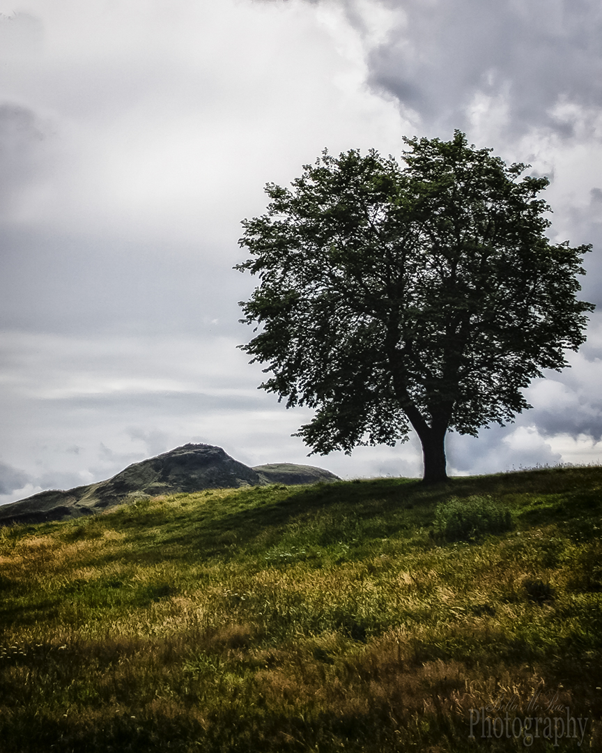 Edinburgh Calton Hill Walking Photography Tour