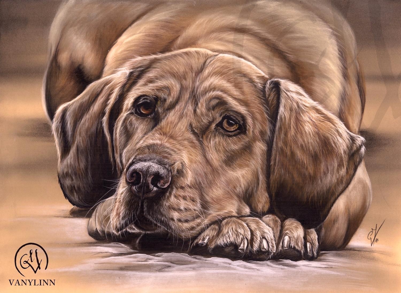 Dog pastel hyper realistic.jpg