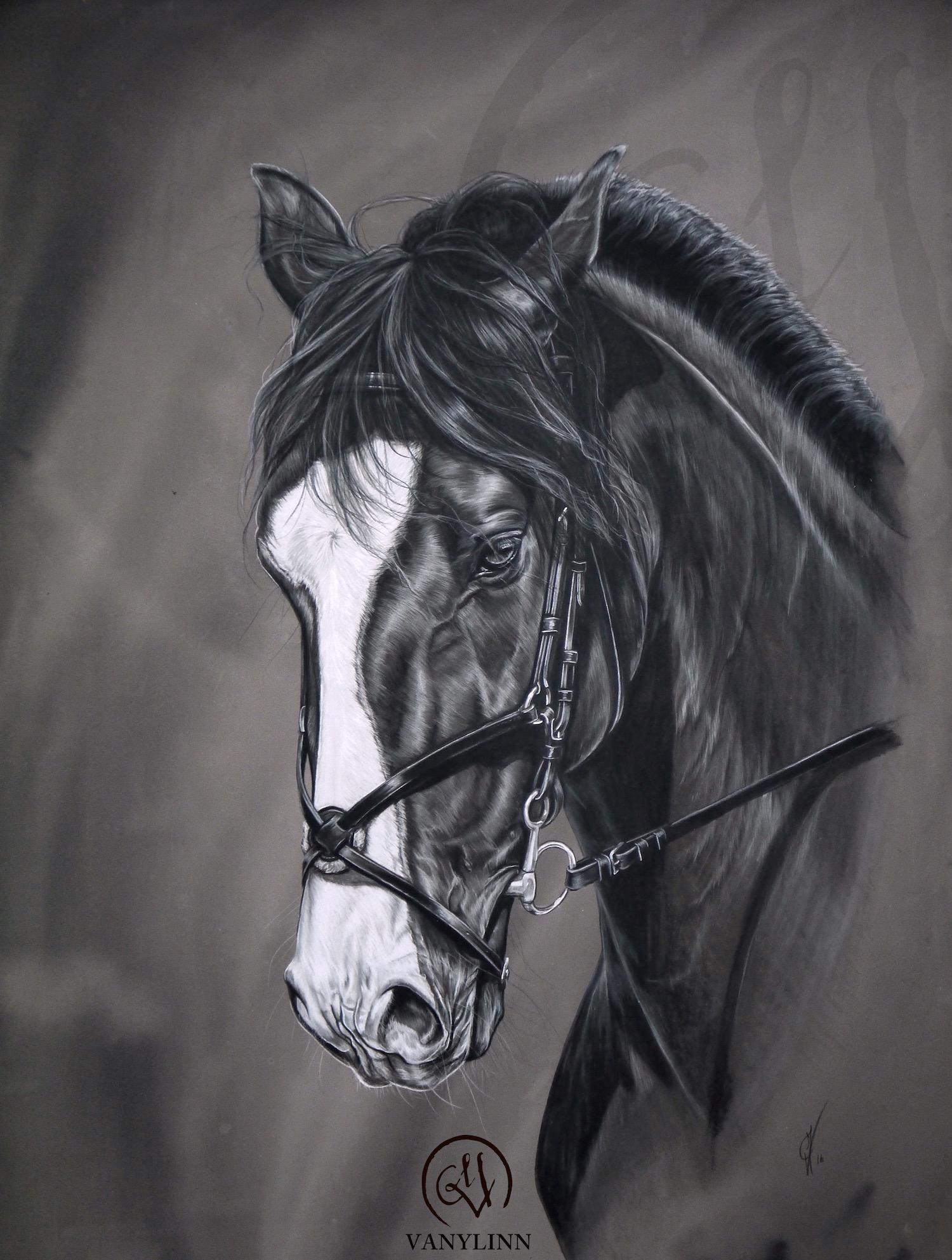 Lélio horse dressage pastel hyper realistic.JPG